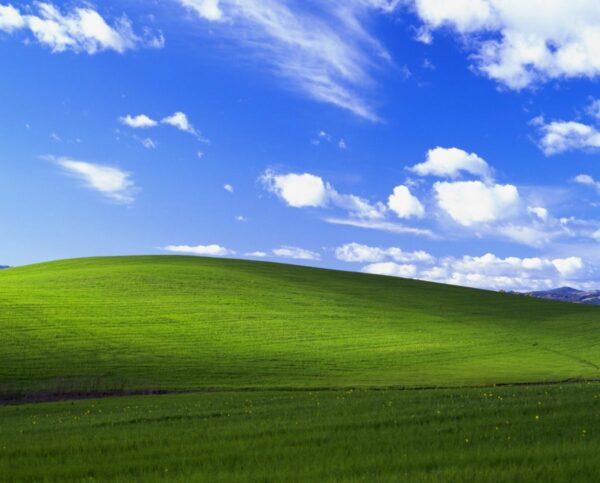 Windows 95 Default Background