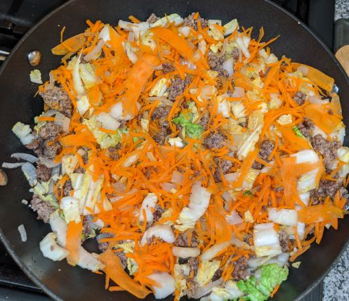 Beef, Onions, Carrots, and Cabbage in Pan