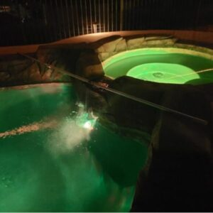 Adding CYA to a Pool
