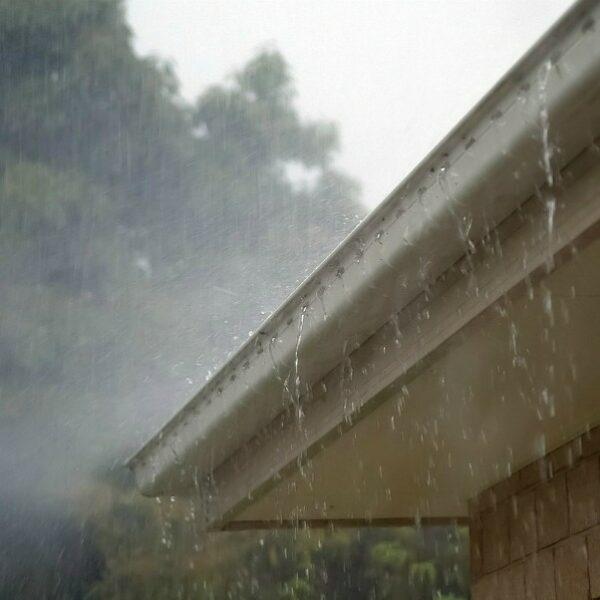 Gutter In Rain
