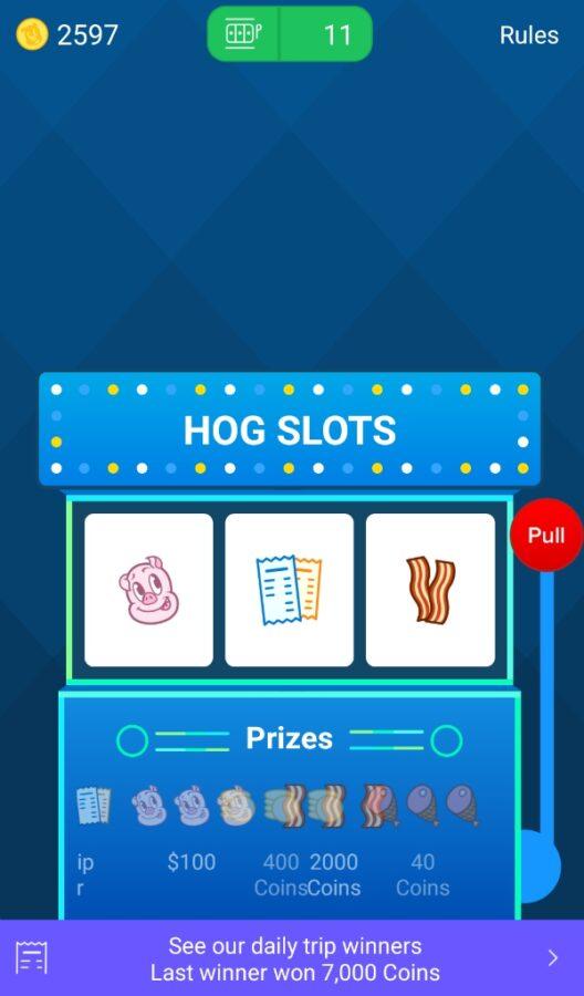 Receipt Hog Slots