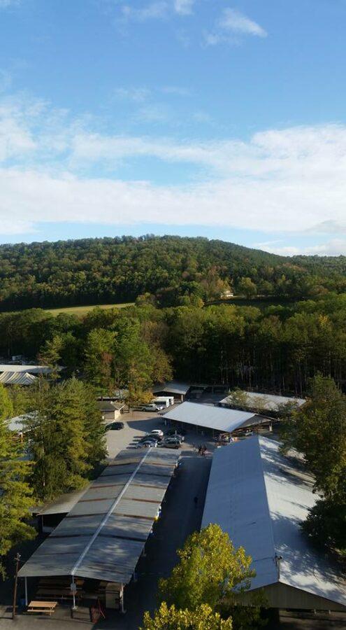 Knoebels Amusement Resort view of Picnic Grove