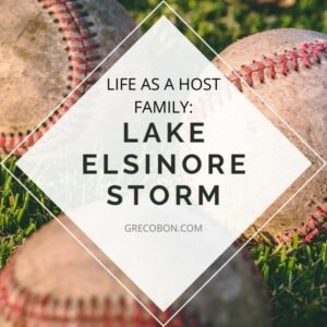 Read more about the article Lake Elsinore Storm Host Family- Year 2